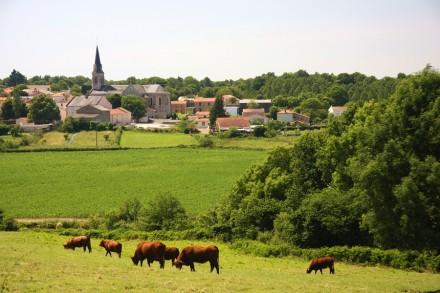 petit-village-vendee-IMG_9548