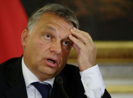 5026933_6_4097_le-premier-ministre-hongrois-viktor-orban-le_9db14038900326c736a80fdfc248236a.jpg