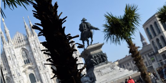 italie-des-palmiers-incendies-sur-fond-de-polemique-raciste-a-milan